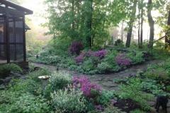 azaleas porch