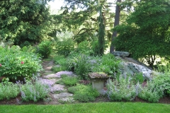 lavendar thyme path