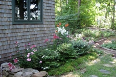 lillies-window