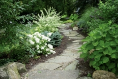our-path (1)